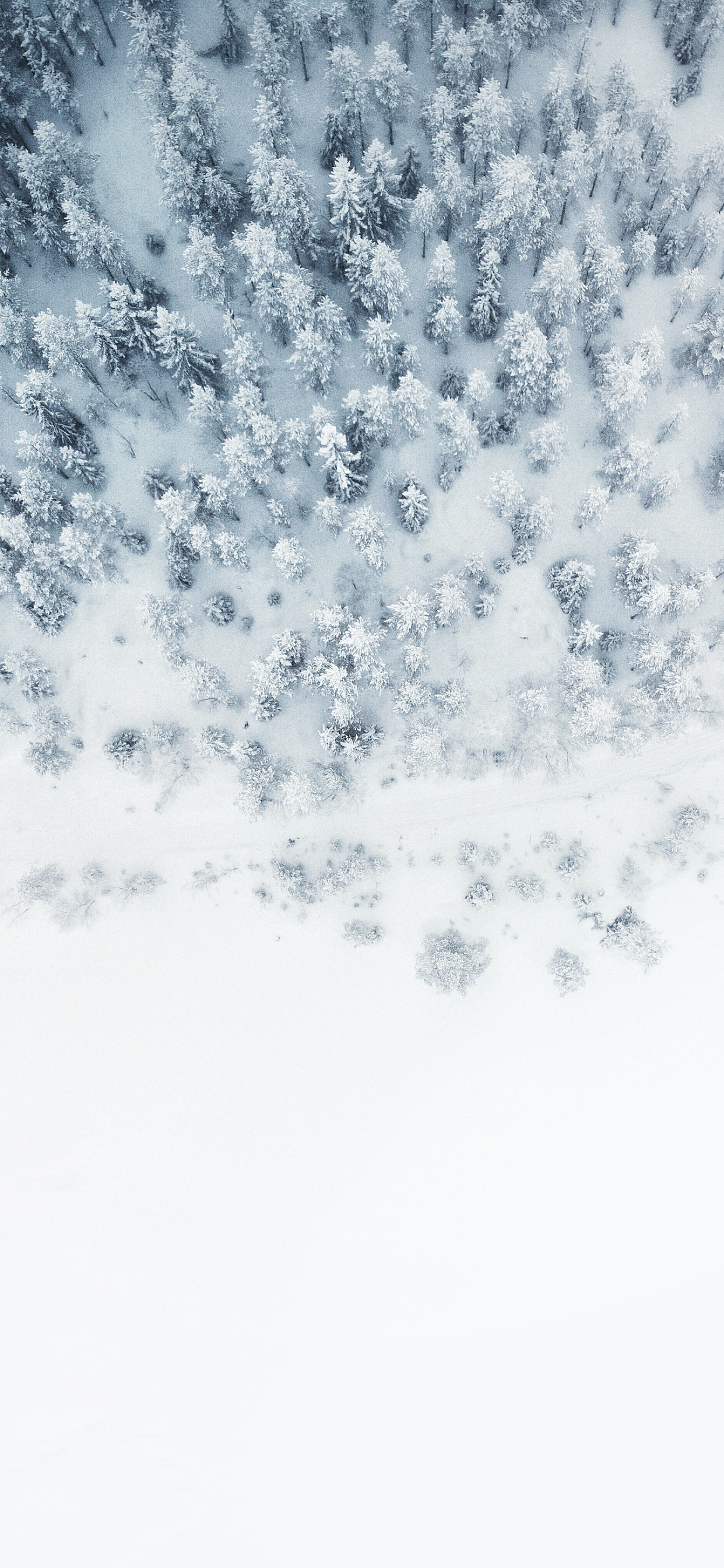 The Beginning Of Winter Wallpapers For Iphone