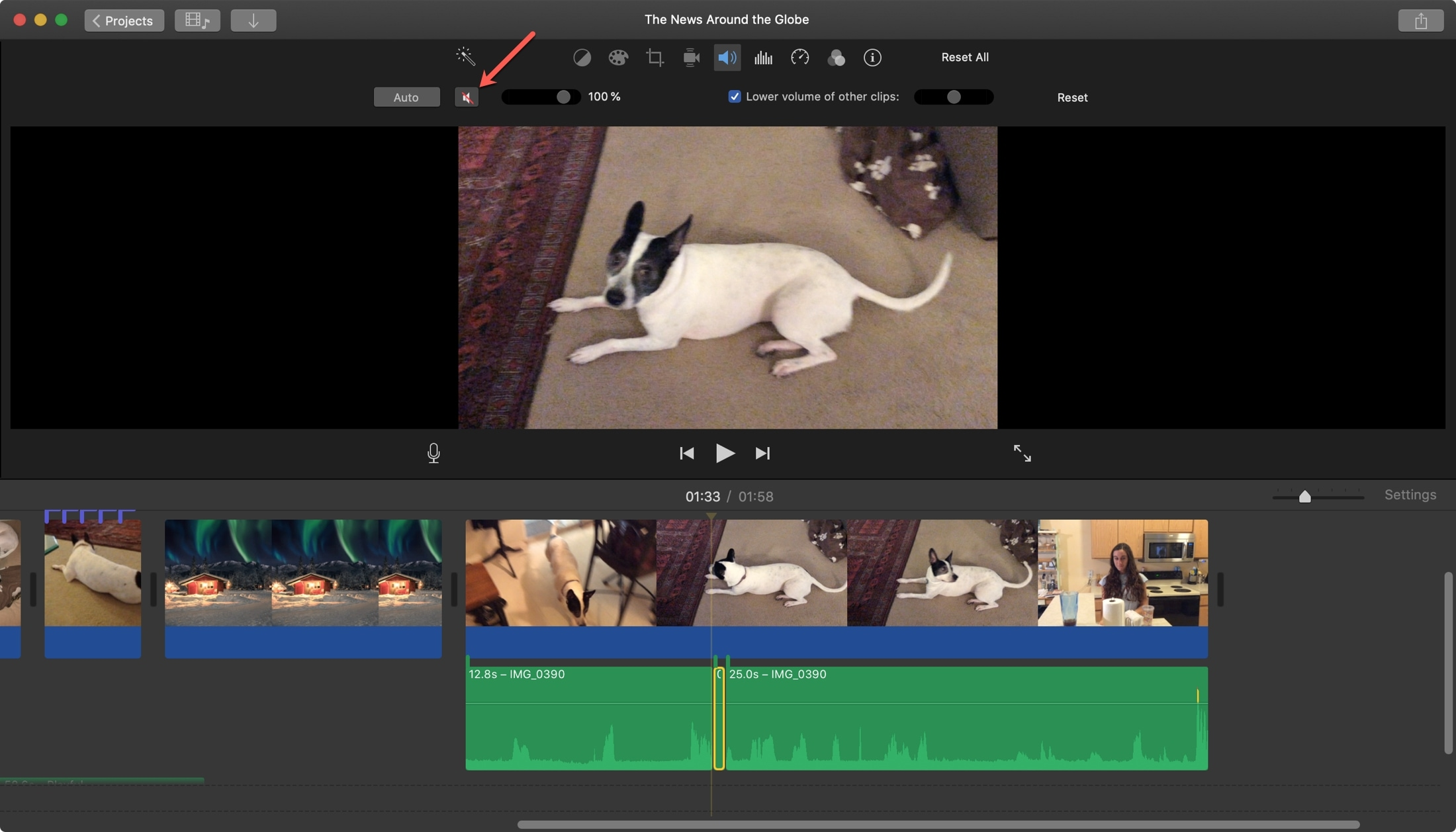 iMovie Mute Isolated Audio Clip