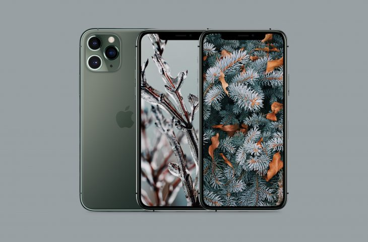 Iphone 11 Pro Wallpaper Floral
