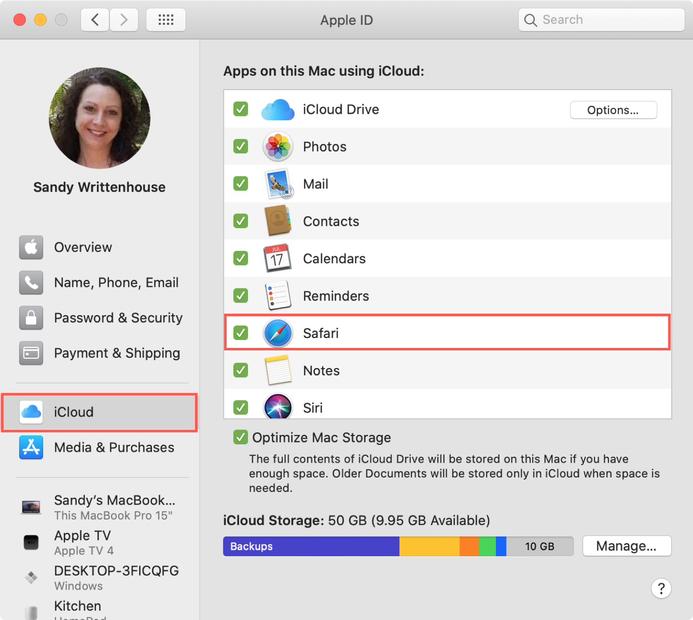 System Pref Apple ID iCloud Safari Mac
