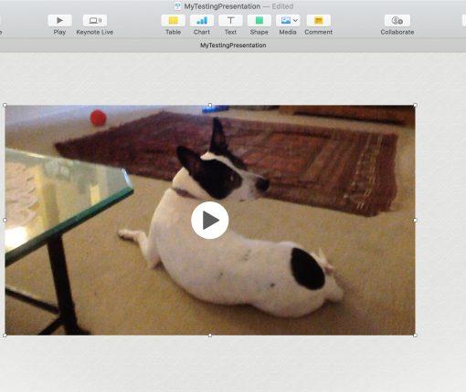 How to insert video in Keynote Mac