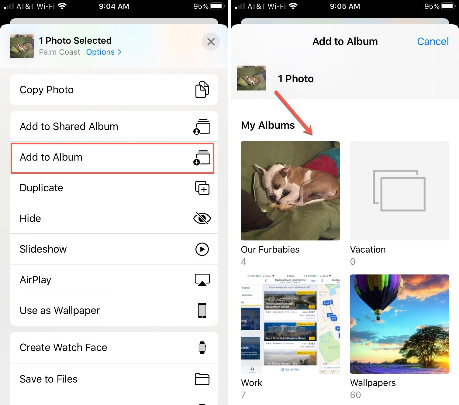 Add Photo to Album in Photos iPhone