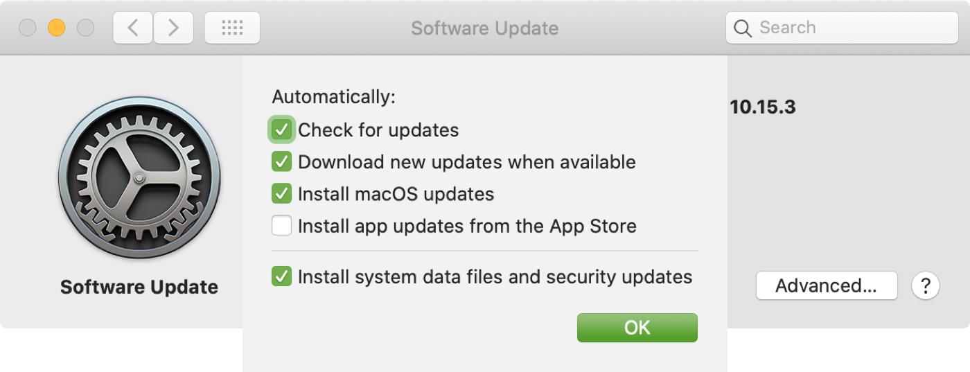 Software Update Install macOS Updates Mac
