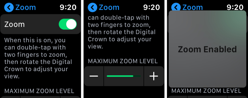 Zoom Settings on Apple Watch
