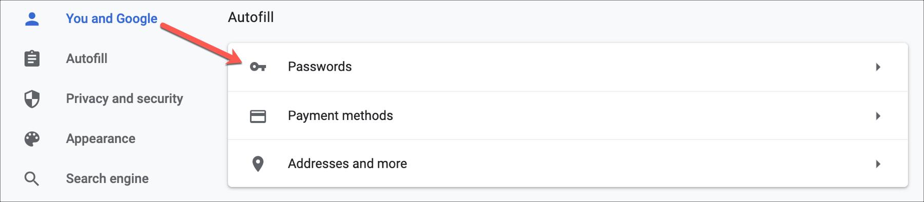 Chrome You and Google Passwords