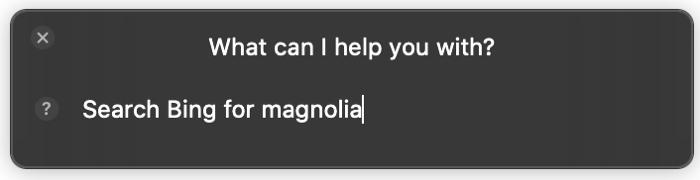Siri Search Bing for on Mac