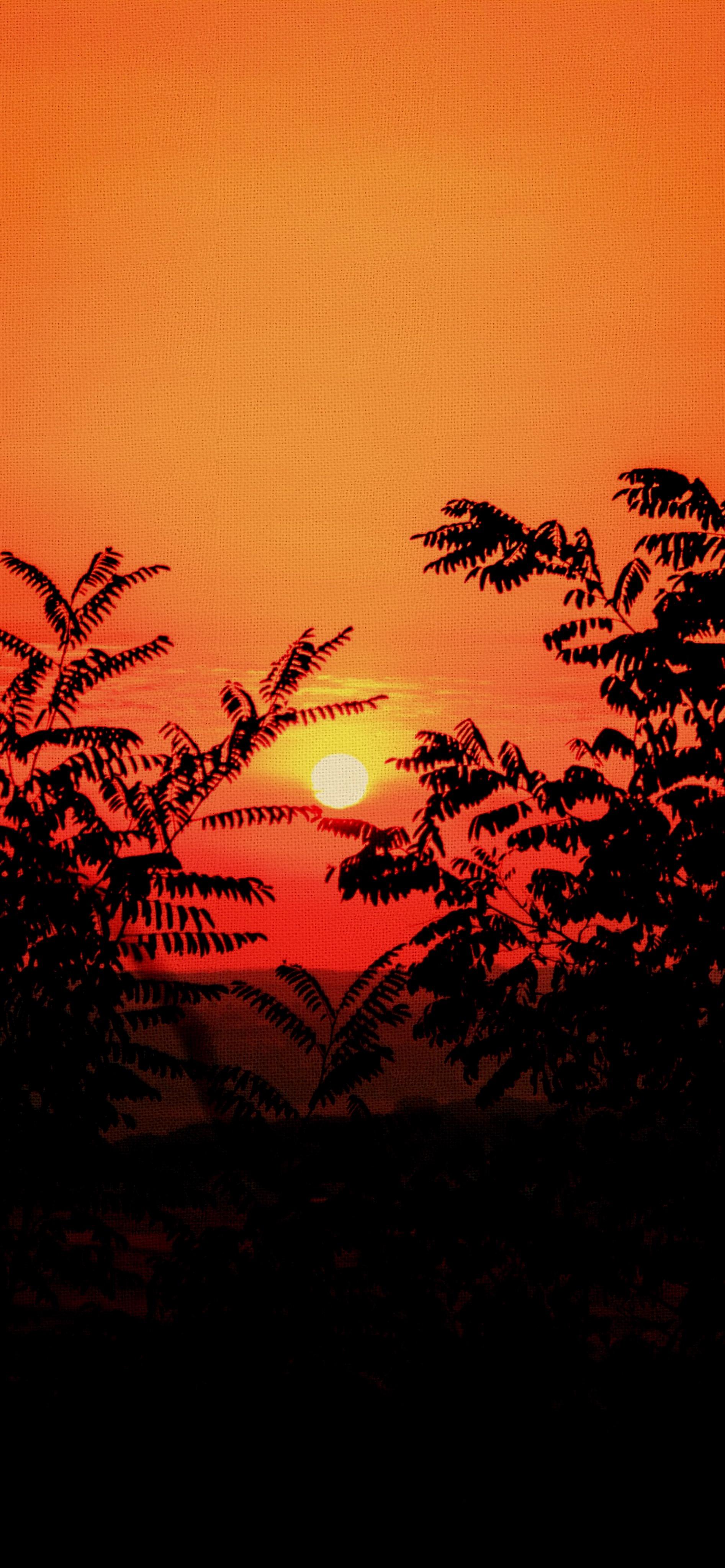 canvas vector iphone wallpaper jianoliu idownloadblog sunset