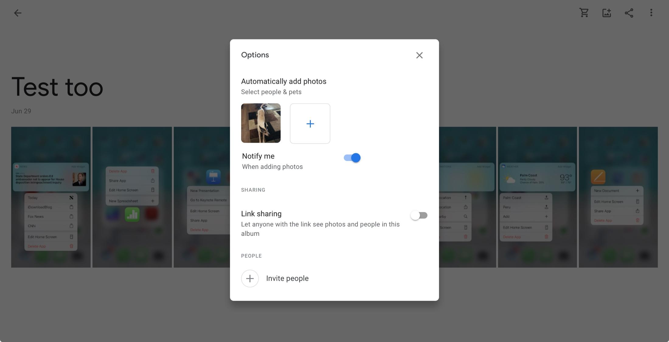Automatisches Update-Album für Google Fotos online