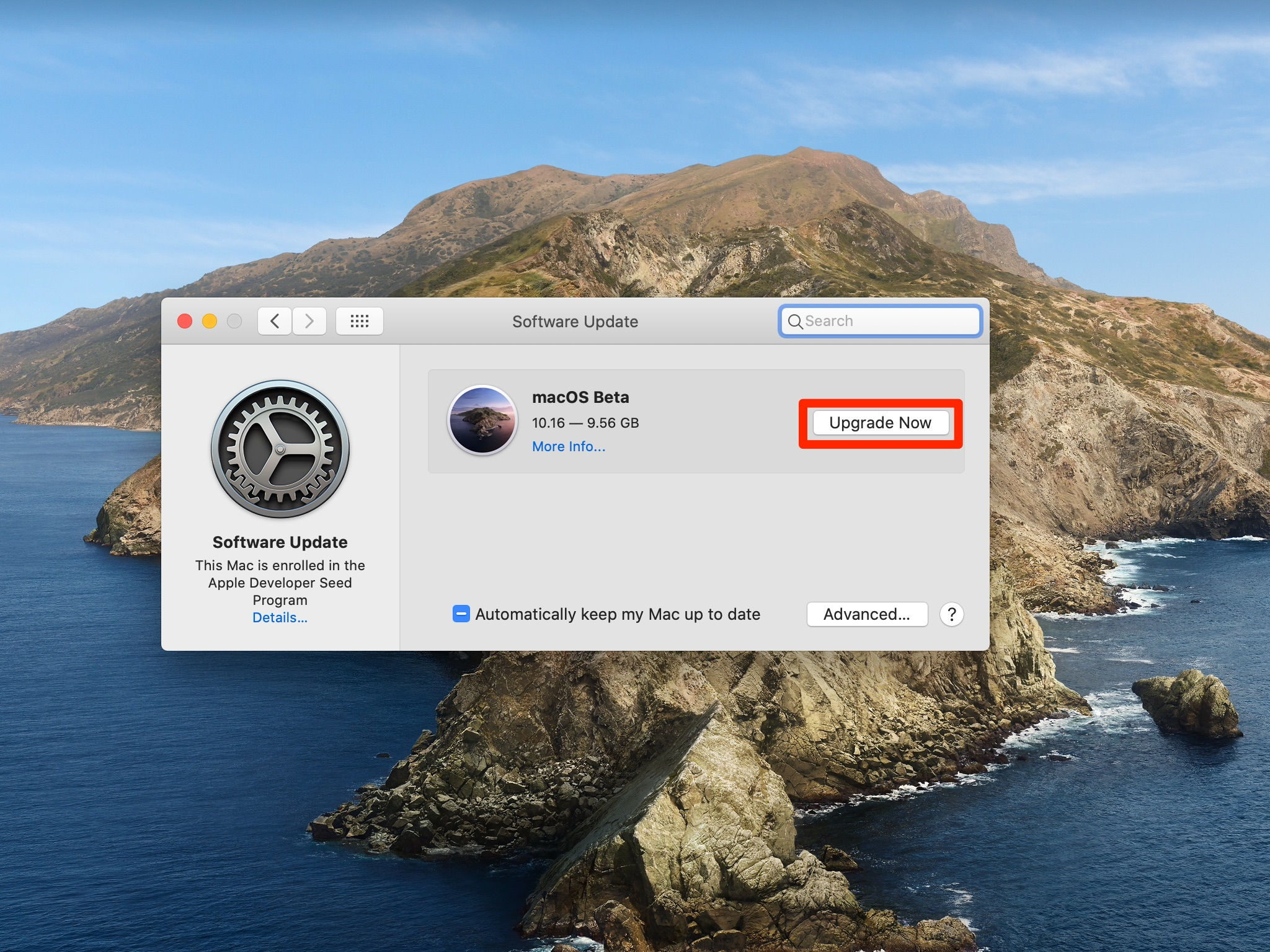 Software Update - MacOS Big Sur beta listed