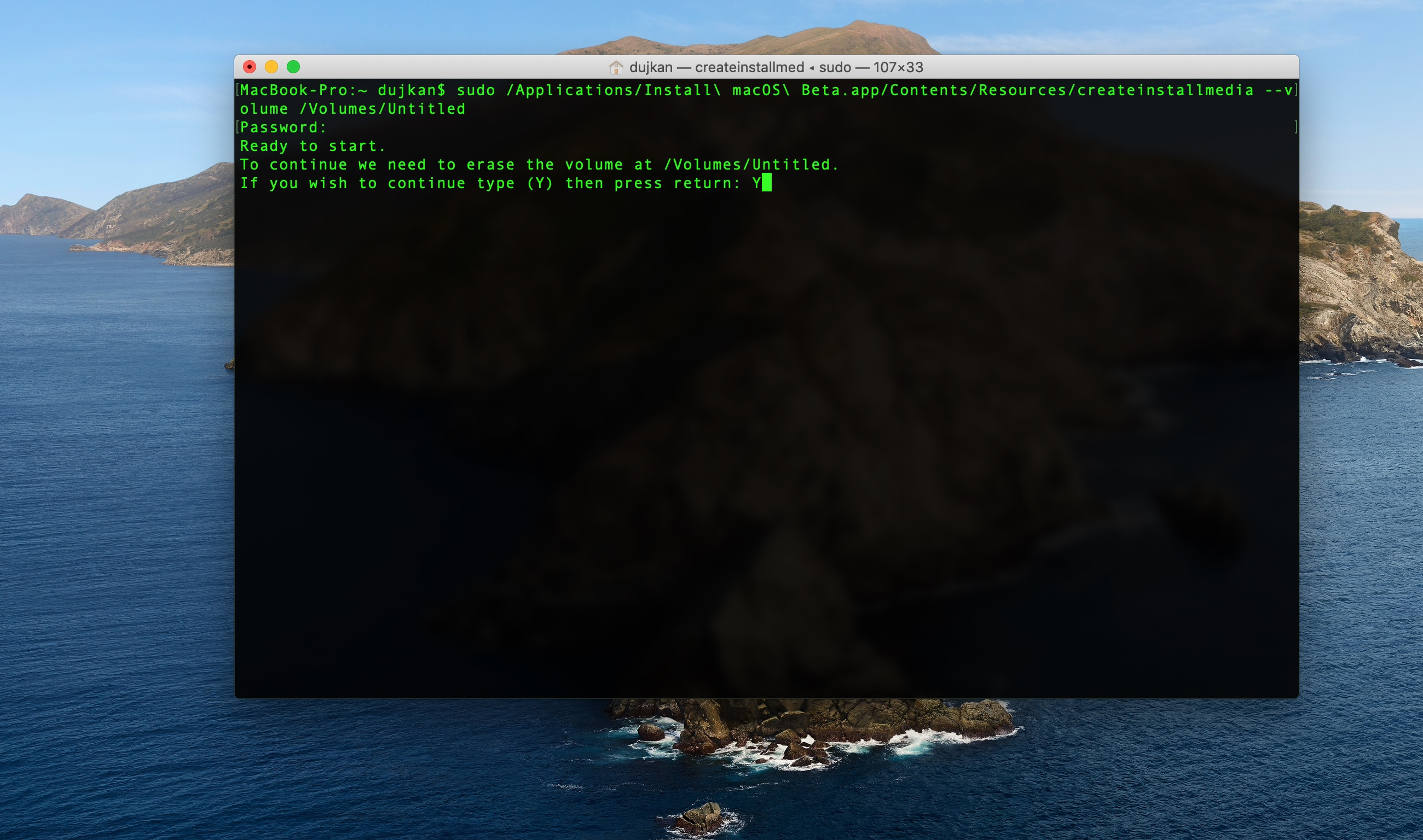macOS Big Sur beta bootable installer - Terminal screenshot 003