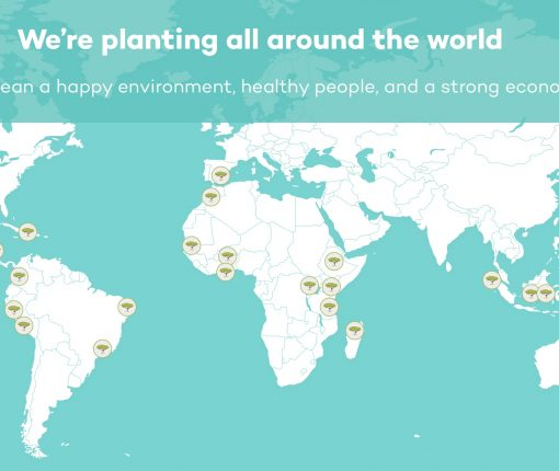 Ecosia How it Works Map
