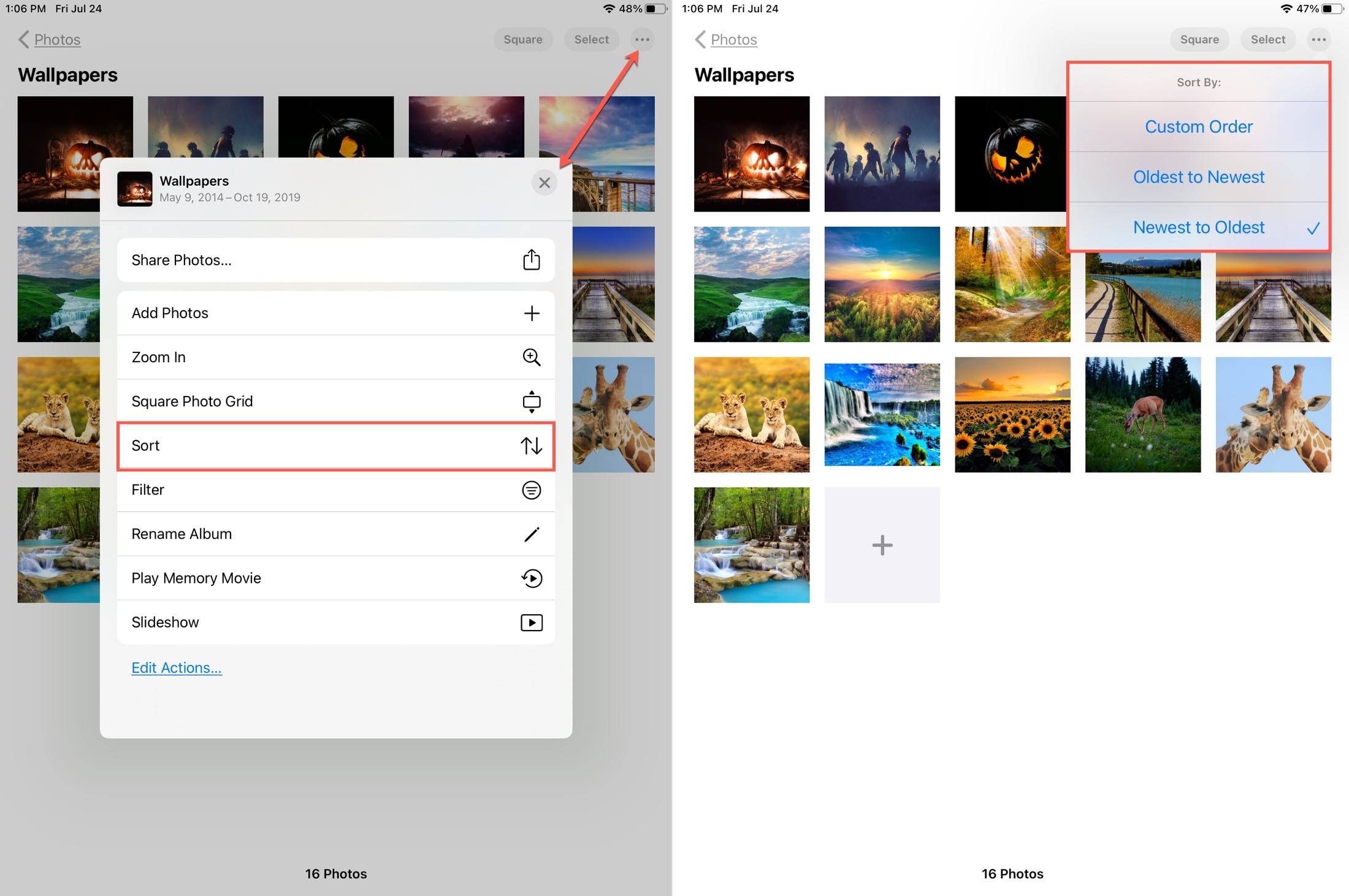 Sort Photos Album iPad
