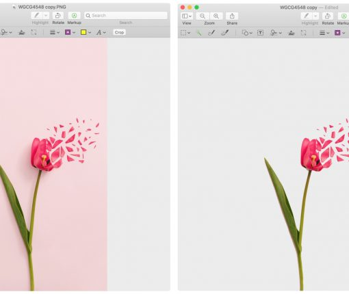 Preview Remove Background From Image on Mac