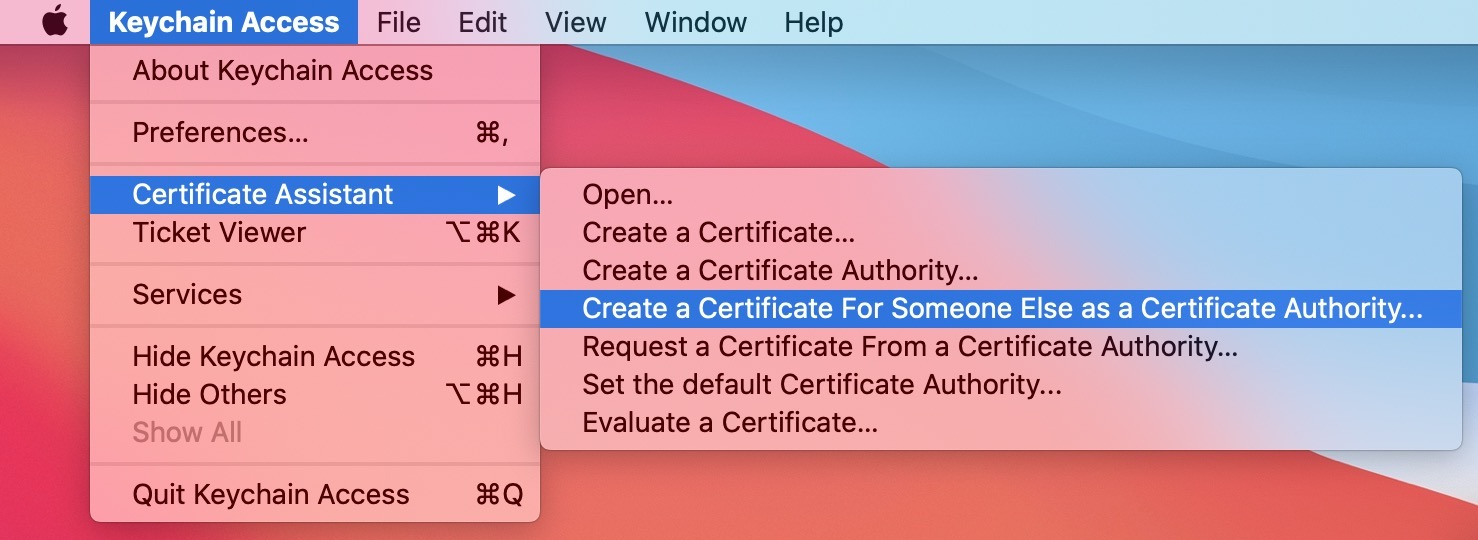 Request Certificate From Certificate Authority