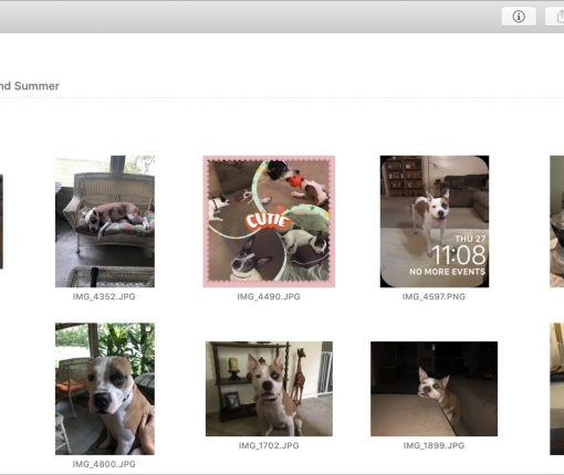 Search Photos on Mac