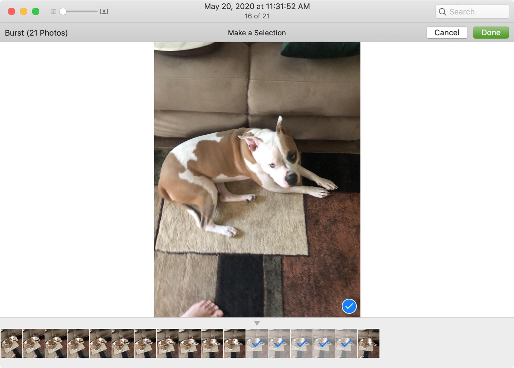 Select Burst Photos on Mac