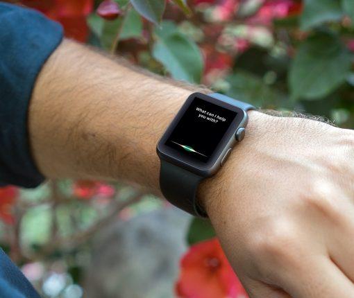 Siri Screen on Apple Watch Garden