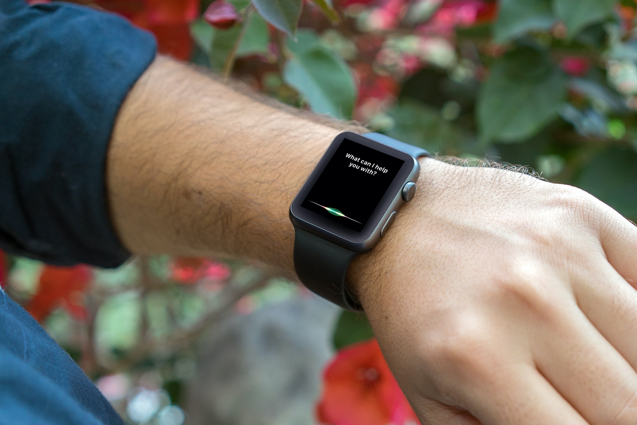 Siri Screen on Apple Watch Garden