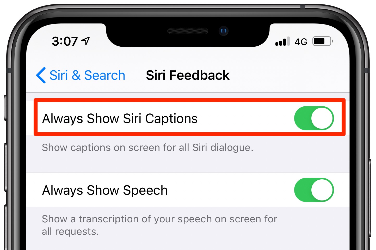 The Always Show Siri captions feature enabled in Siri settings