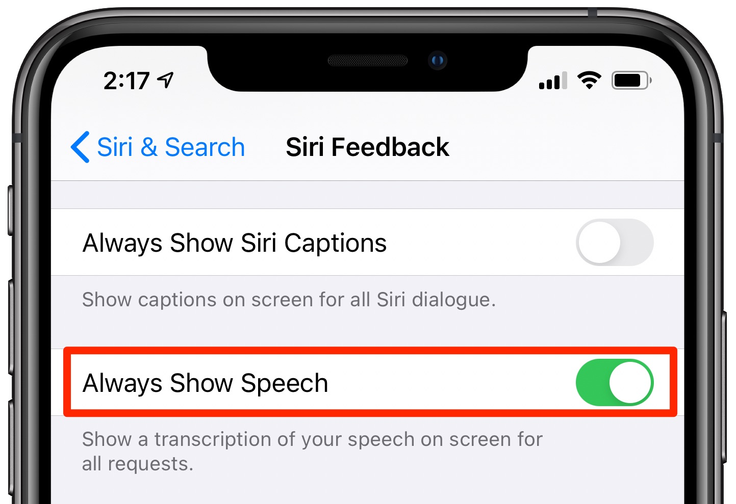 Siri transcriptions - the Always Show Speech option enabled in the Siri settings