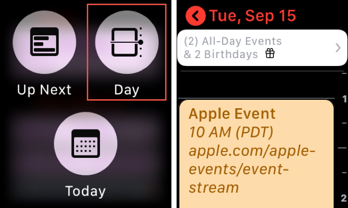 Enable the Calendar Day View on Apple Watch