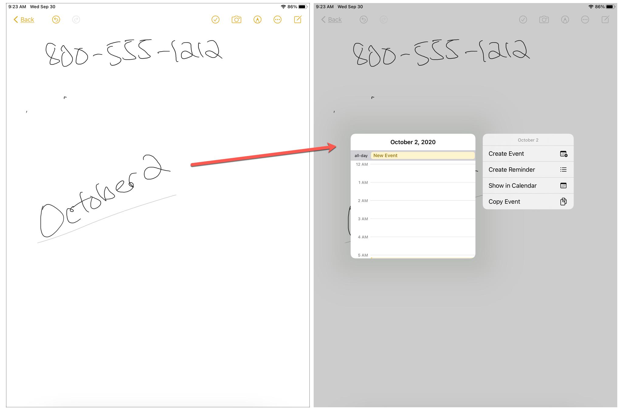 Data Detector iPad Date