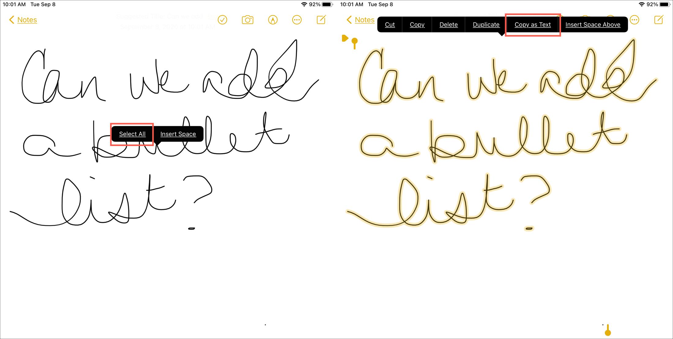 iPadOS 14 Notes Copy as Text