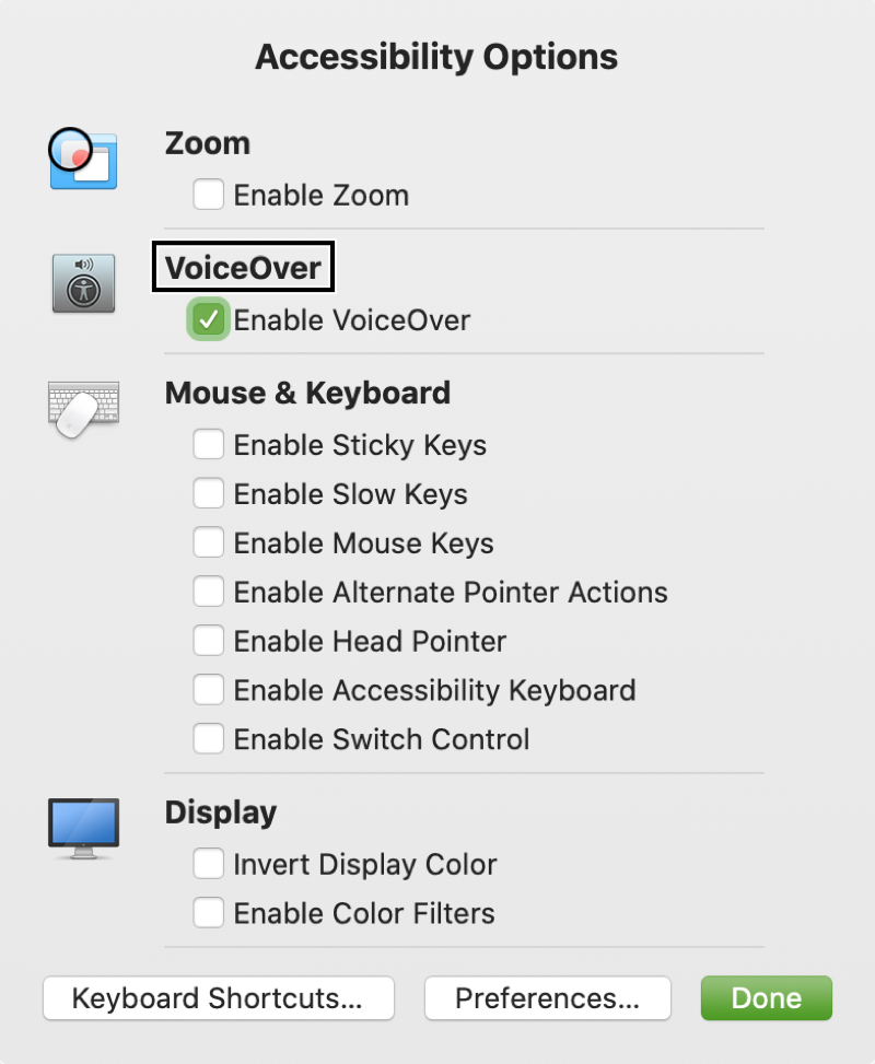 Accessibility Options Shortcut Panel with VoiceOver On