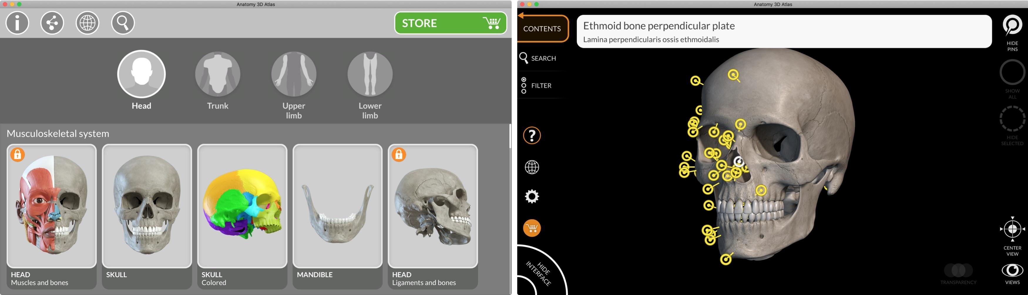 Anatomy 3D Atlas Mac App