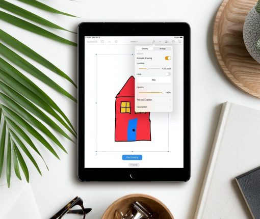 Animate Drawing Options in Pages on iPad