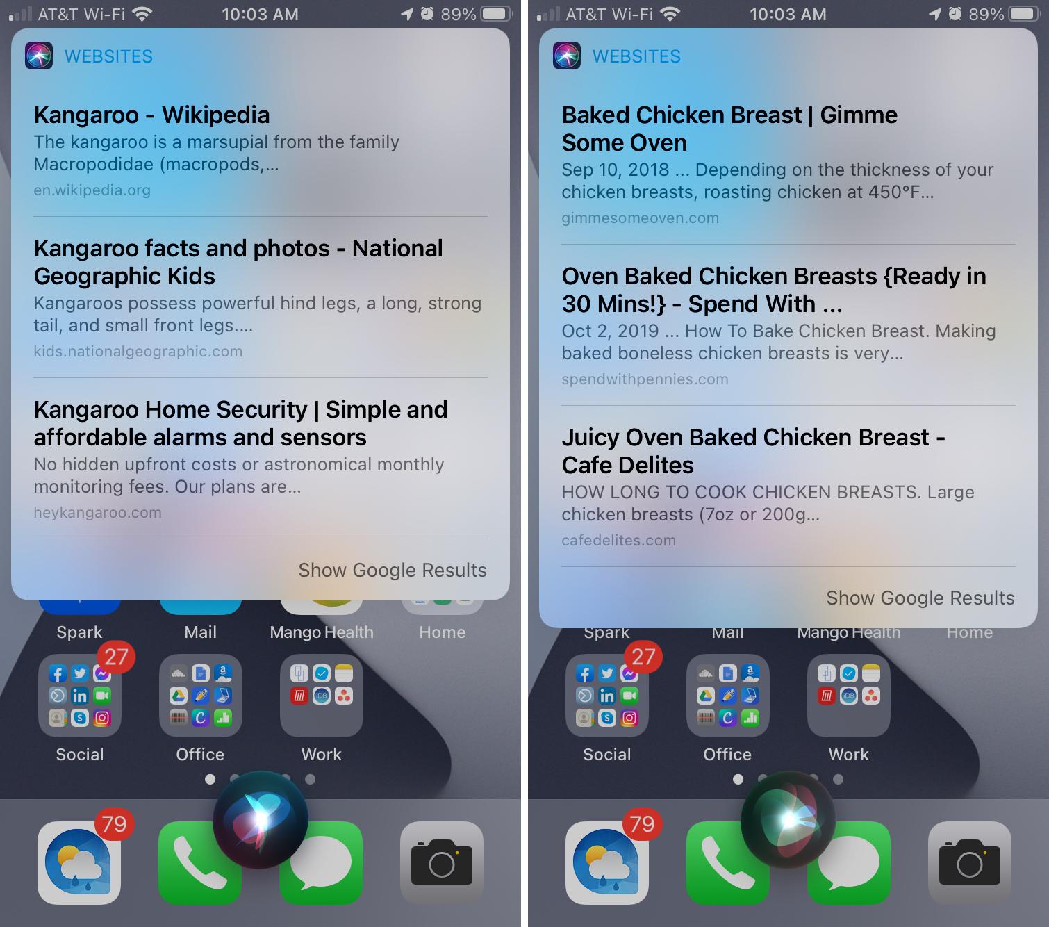 Siri HomePod Web Results on iPhone