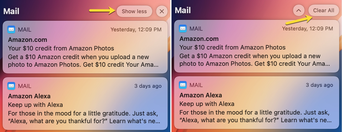 Notifications Show Less and Clear All on Mac Big Sur