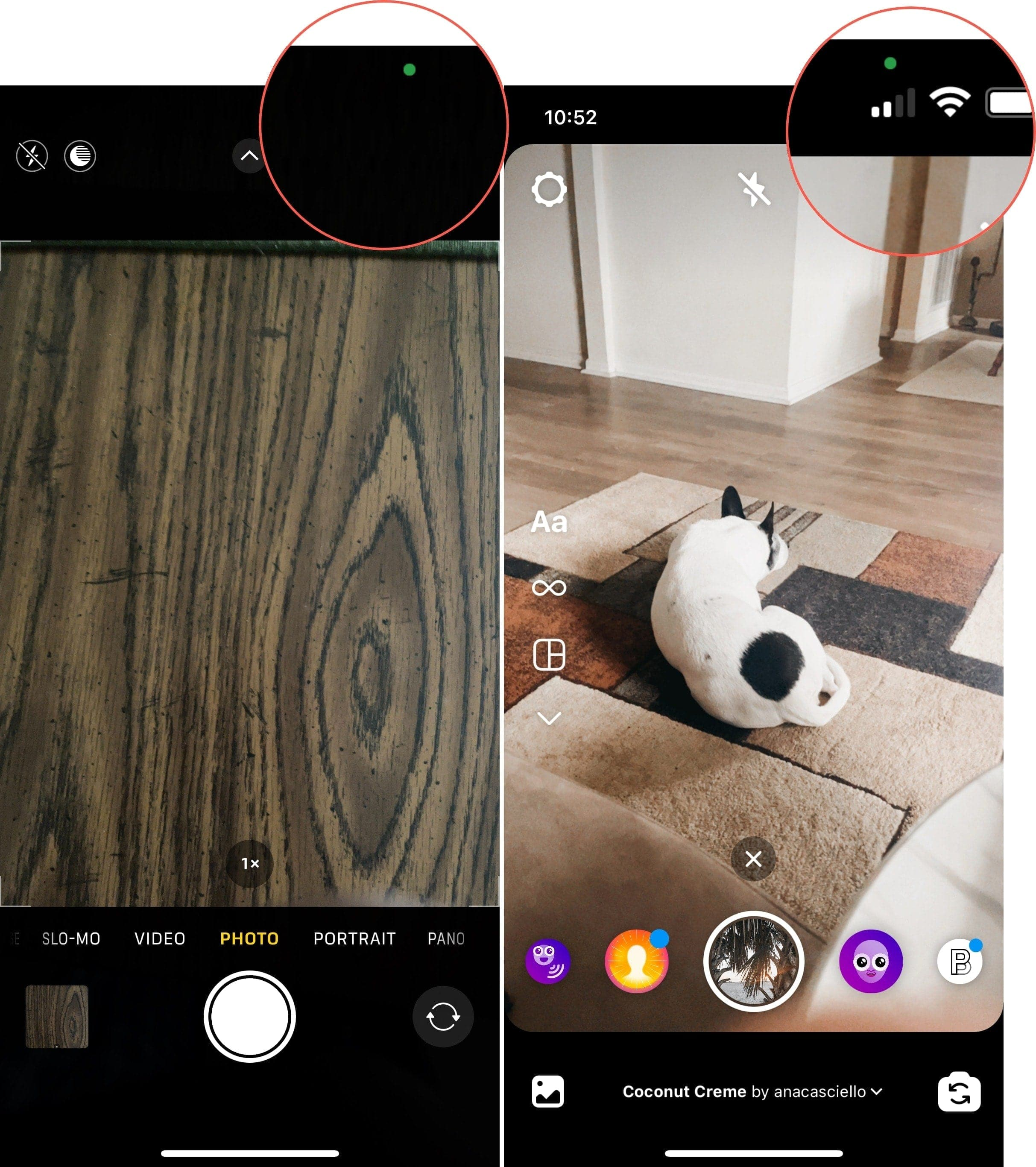 Green Dot for Camera and Instagram