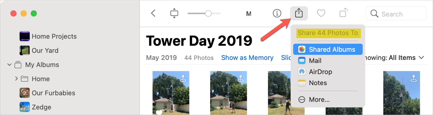 Mac Photos Share Button and Shared Albums