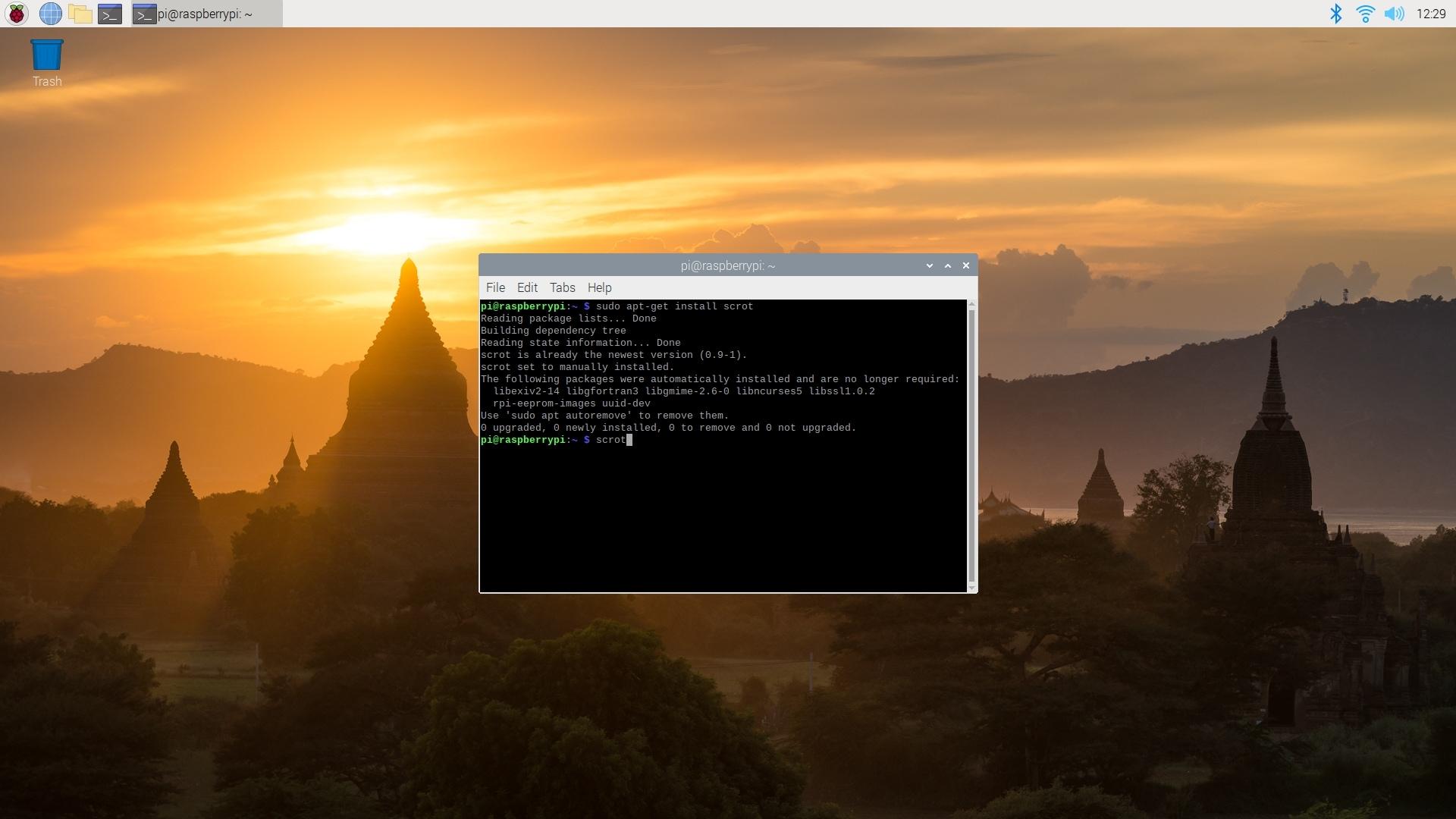 Raspberry Pi OS Desktop Terminal