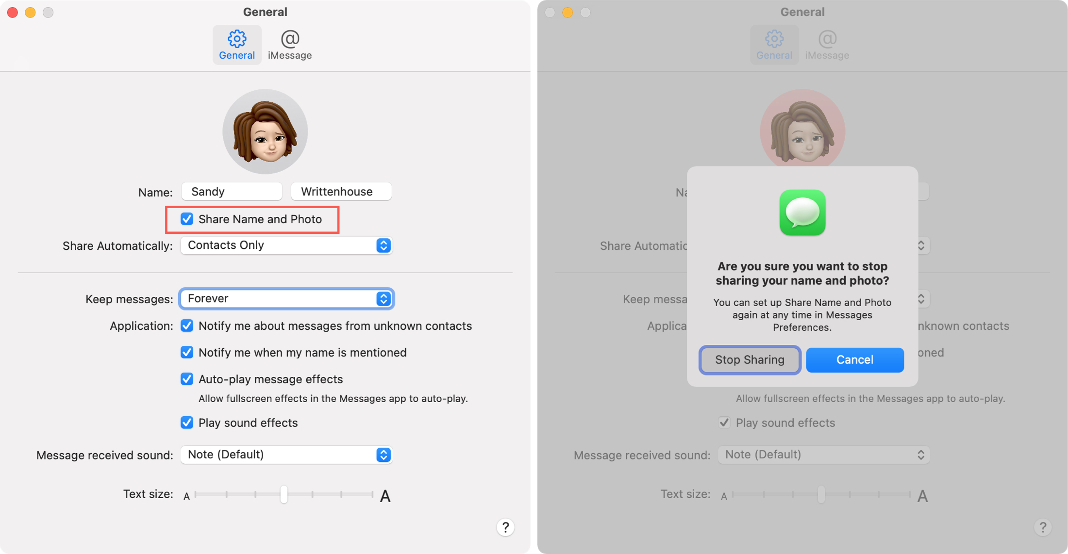 Stop Name and Photo Sharing in Messages on Mac