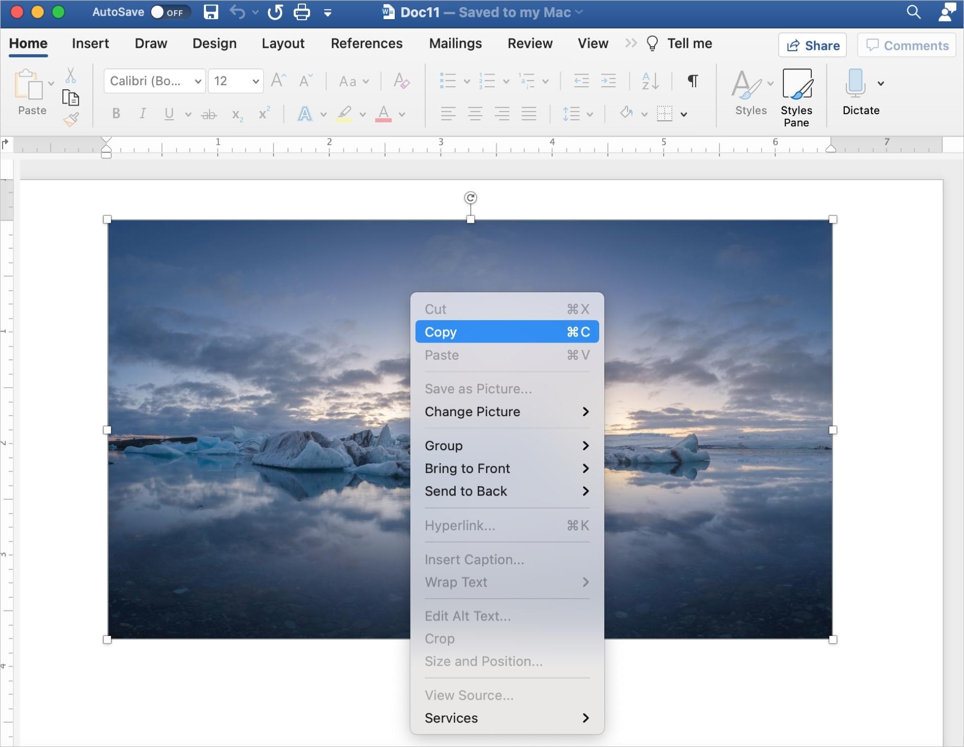 Word Copy Image on Mac