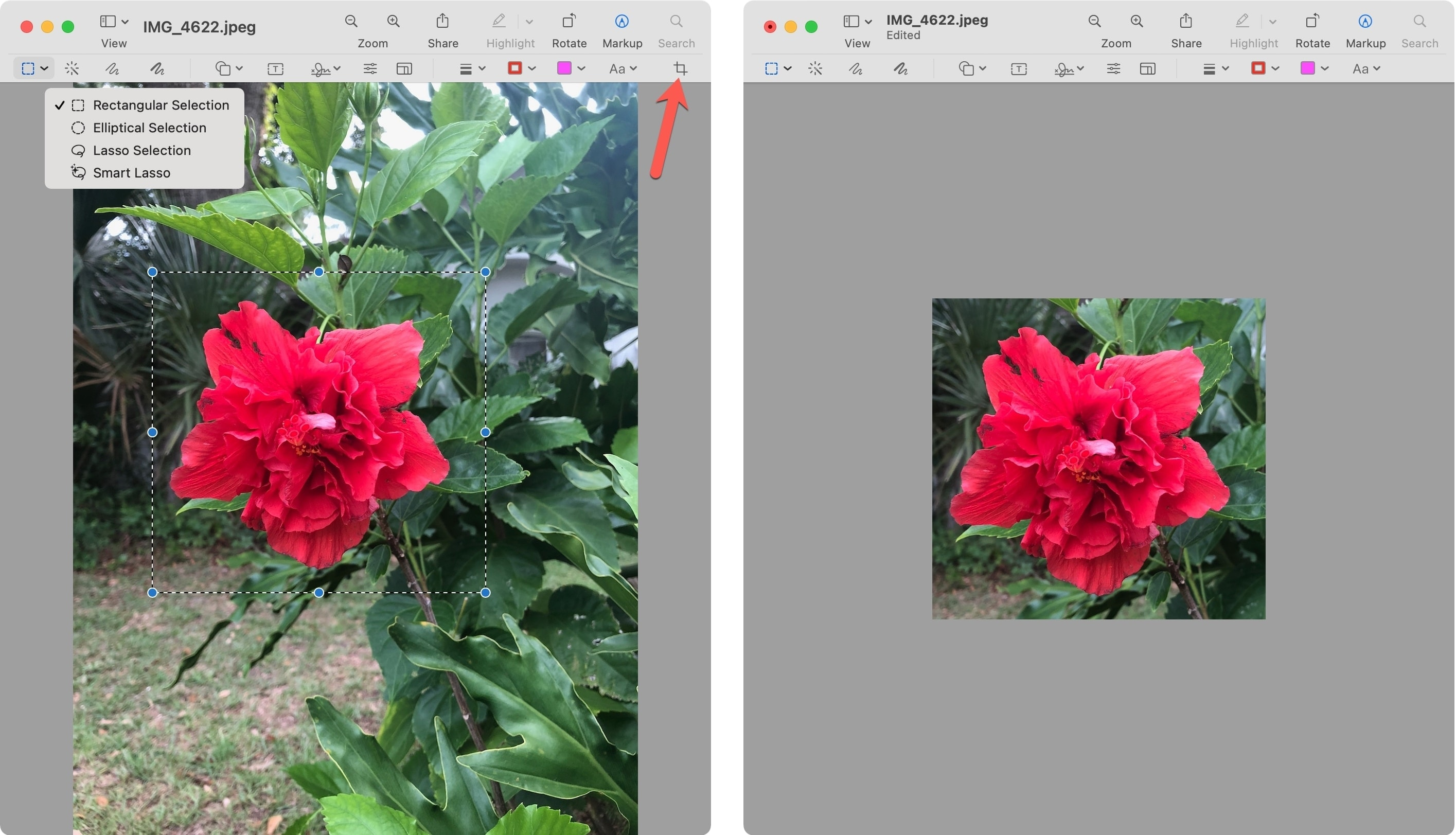 Markup to Crop an Image on Mac with Preview