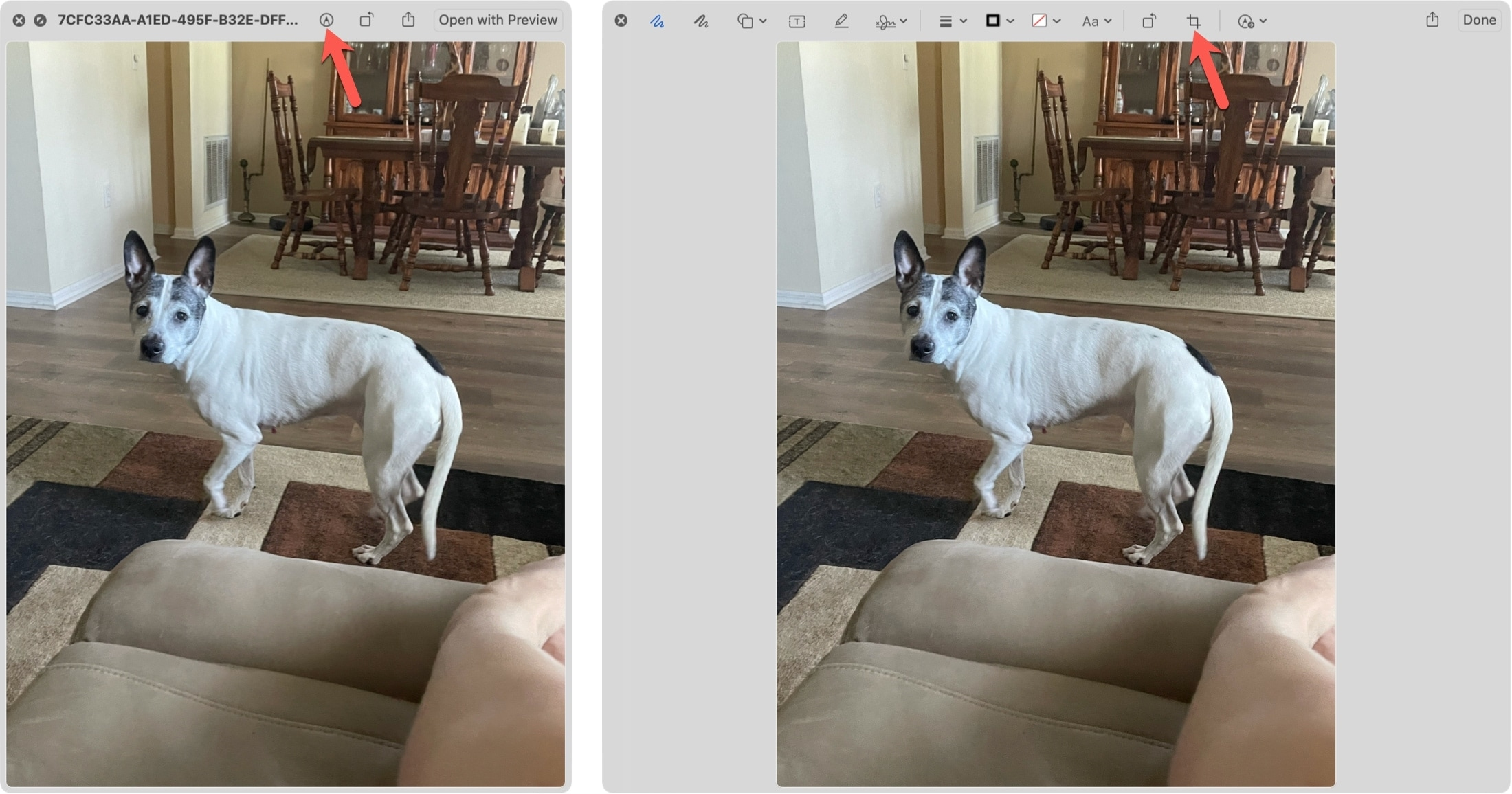 Markup an Image with Quick Look on Mac