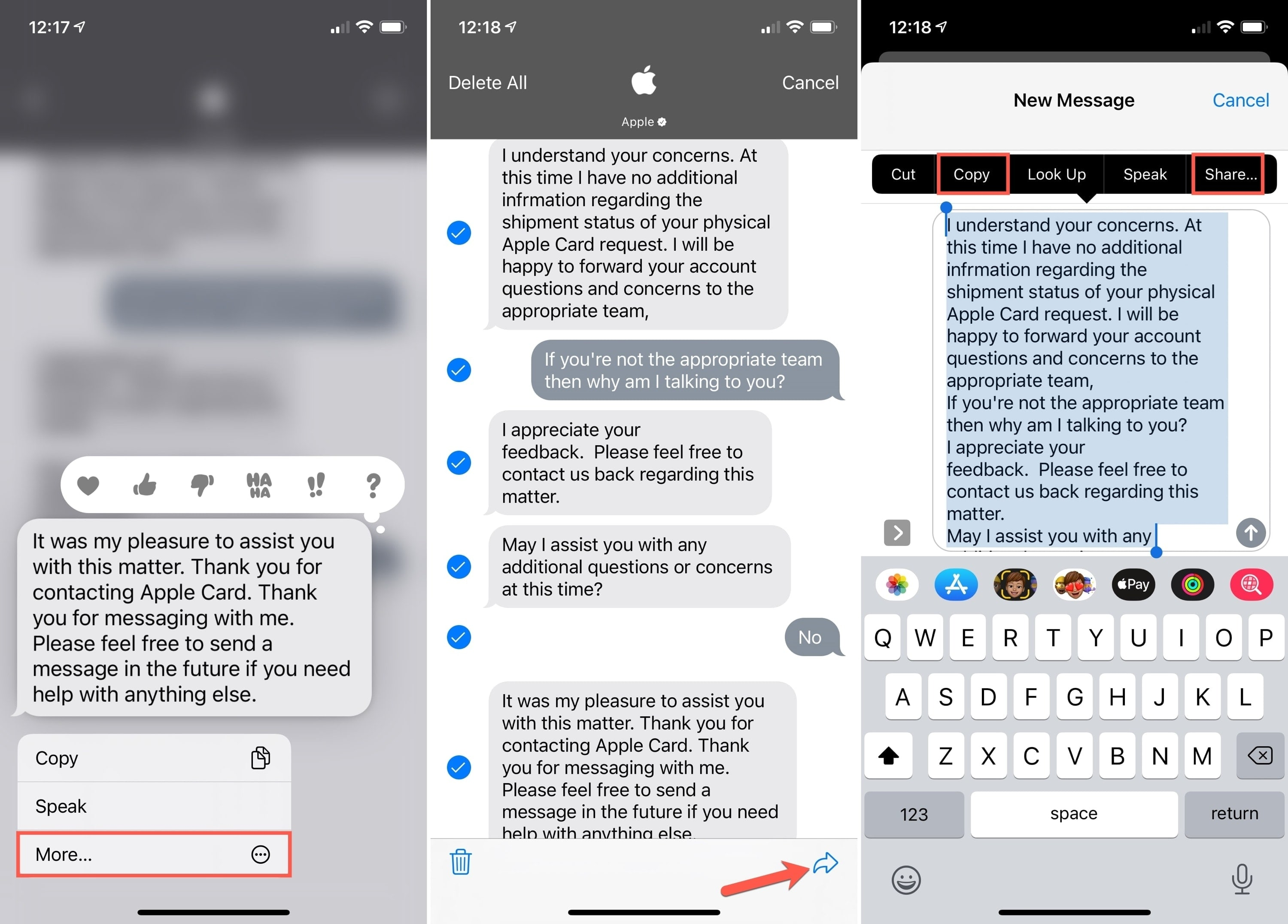 Messages Select All and Copy or Share on iPhone