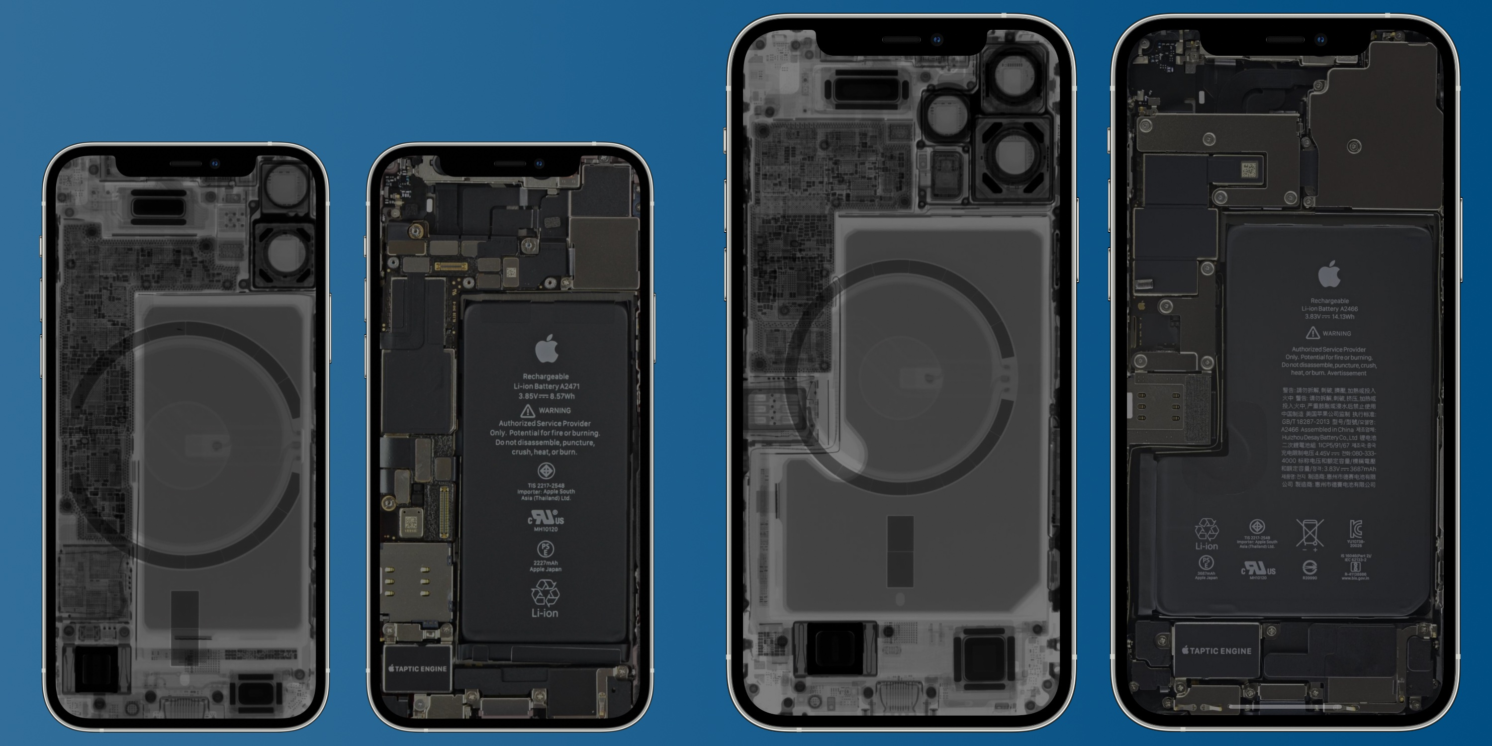 An X-ray image showing the MagSafe magnets in the iPhone 12 mini and iPhone 12 Pro Max