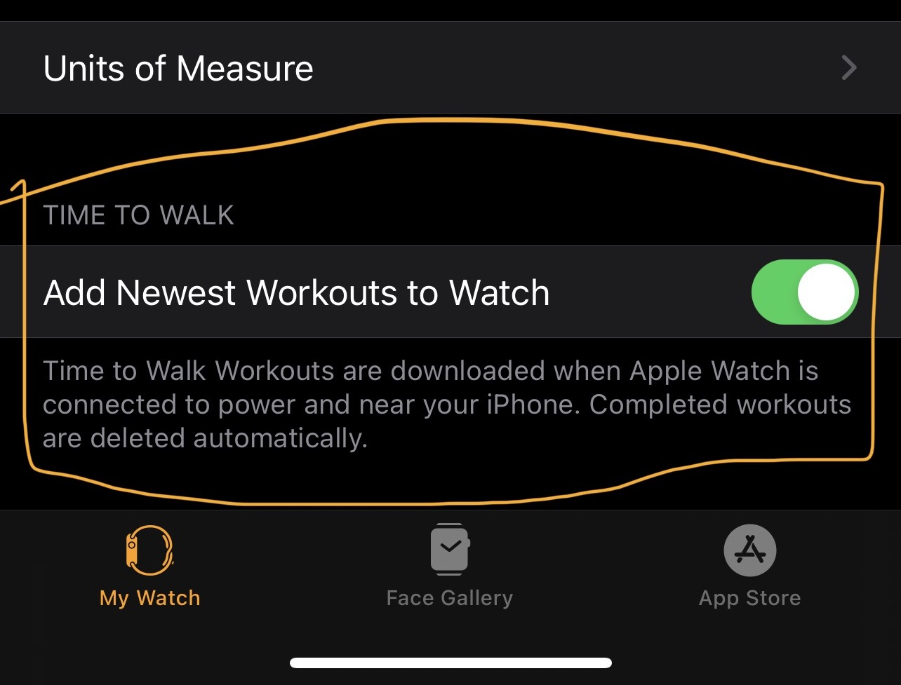 """A screenshot of the new """"Add Newest Workouts to Watch"""" setting in the companion Watch app on iOS 14.4"""