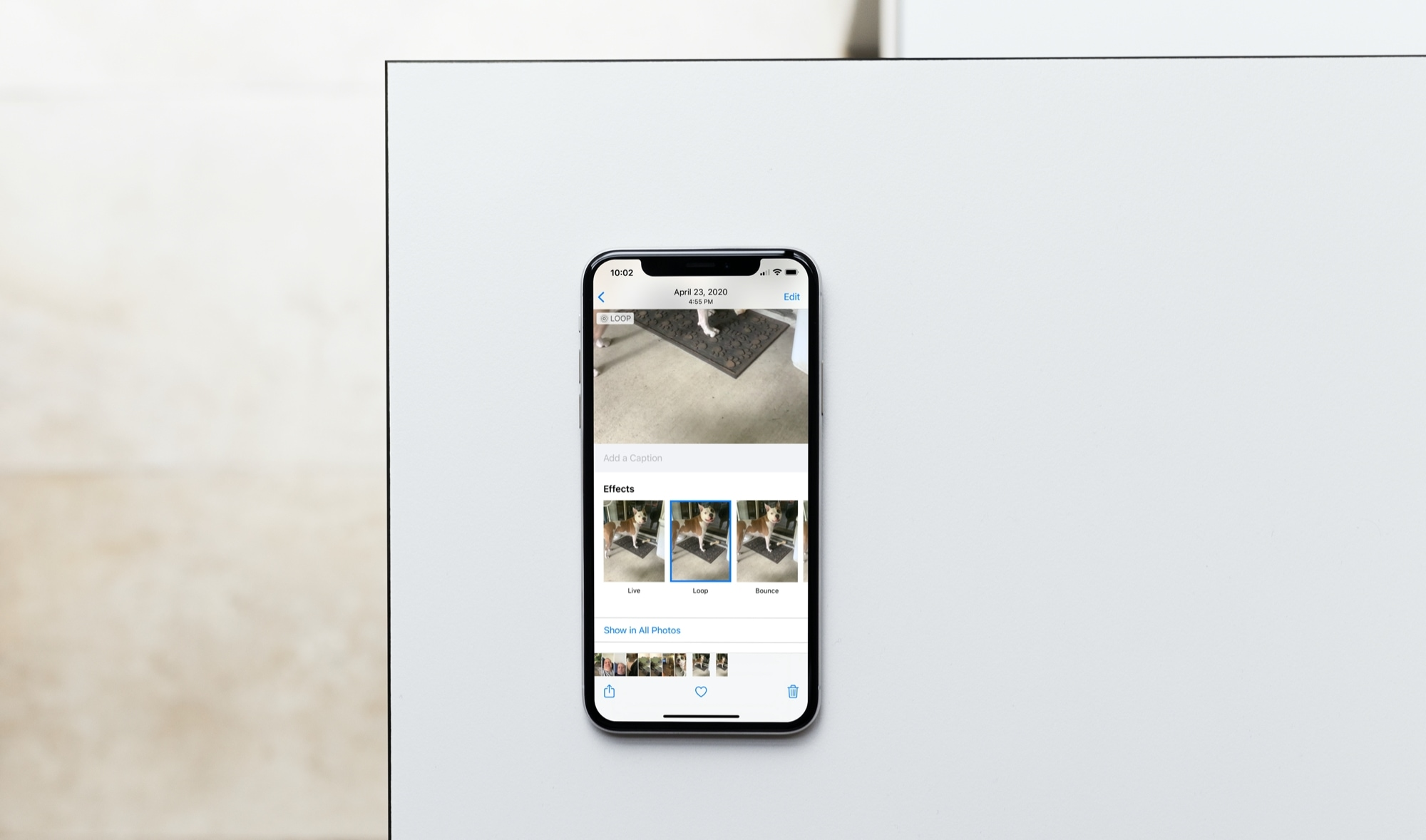 Add Loop Effect to Live Photo on iPhone