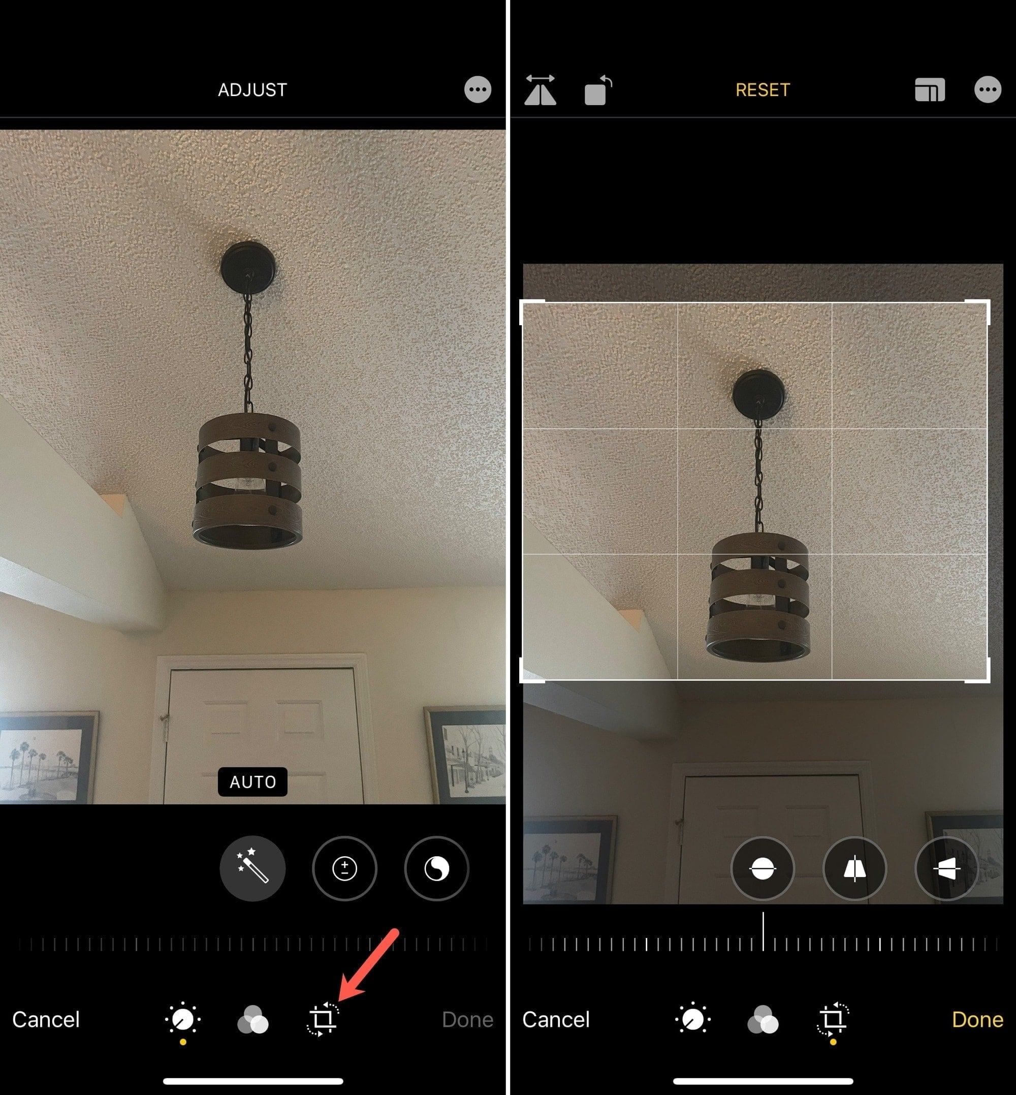 Crop a Photo on iPhone with Freeform