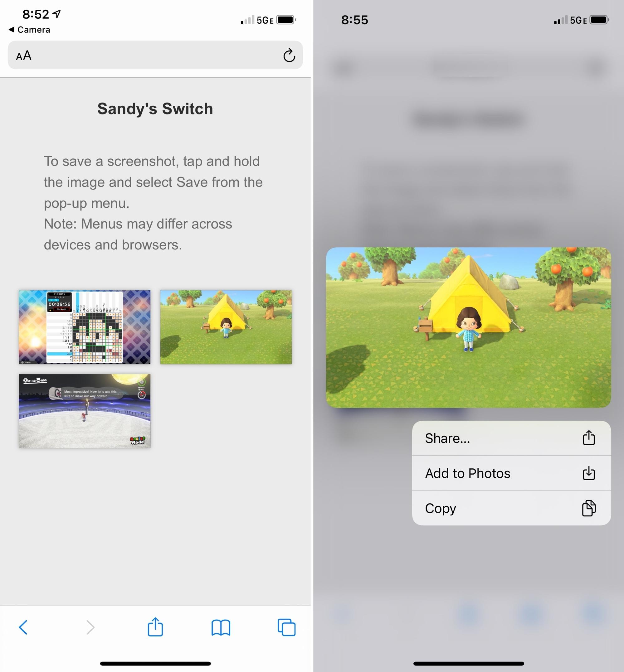 Sandys Switch in Safari on iPhone