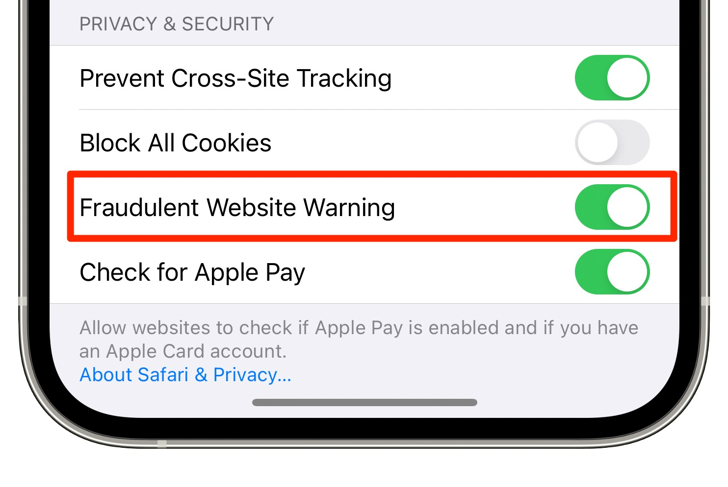 An iPhone screenshot showing the Security & Privacy section of the Safari settings with the Fraudulent Website Warning feature switched on
