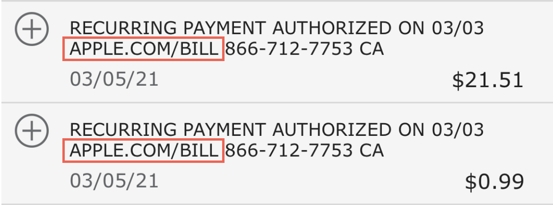 Apple Bill Bank Statement