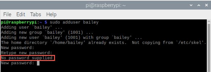 Raspberry Pi Add User with No Password