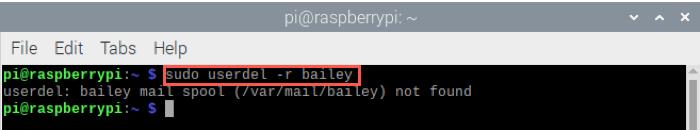 Raspberry Pi Delete User