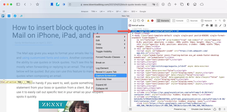 Safari Web Inspector Capture a Screenshot on Mac